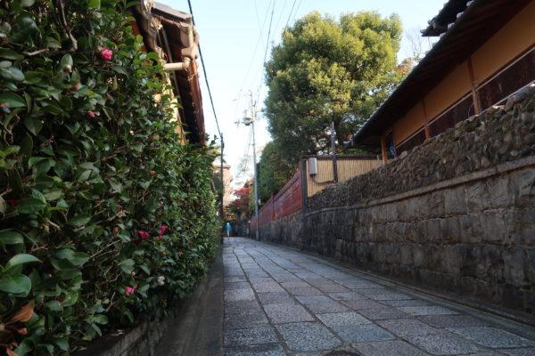 八坂神社-清水寺08